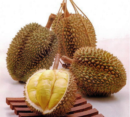 durian7[1]